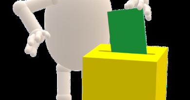 Déroulement du vote des élections CNESERAAV